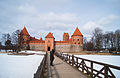 Castle of Trakai (8602877235).jpg