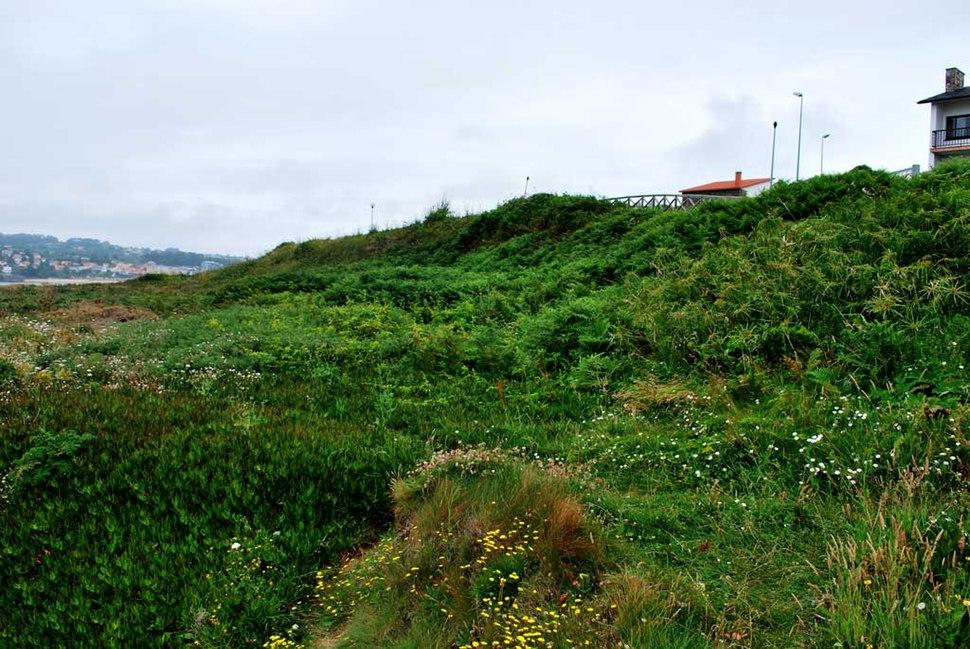 Castro de Morro Canide Oleiros A Coruña Galiza