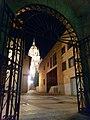 Catedral nueva asuncion virgen huerto noche.jpg