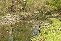 Cauce Viejo del Riachuelo 10.jpg