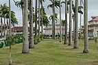 Cayenne place des palmistes et Bar des palmistes 2013.jpg