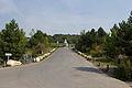 Center Parcs Lac de l'Ailette - IMG 2739.jpg