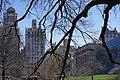Central Park (near Metropolitan Museum) - panoramio.jpg