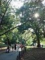Central Park 2012-09-12 17-04-53.jpg
