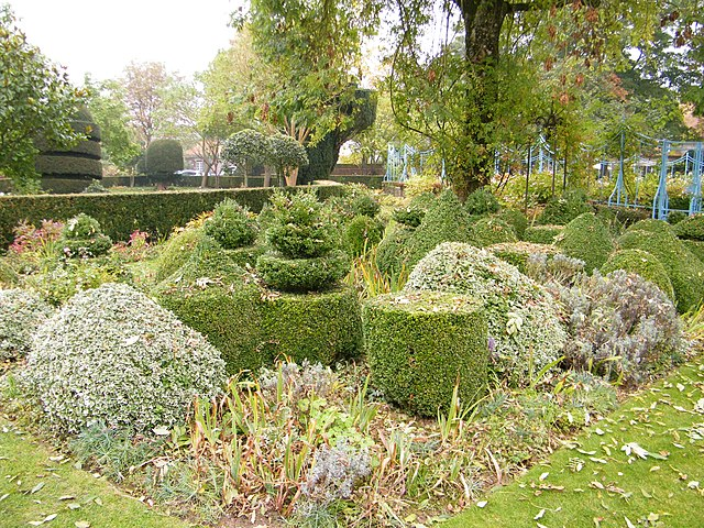 topiary at Jardin de Maizicourt