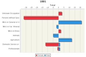 Chesterton, Huntingdonshire - Occupational Data of 1881 for Chesterton