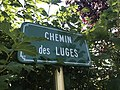 Chemin des Luges de Pratz (Jura).JPG