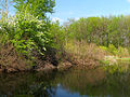 Chervyak lake Muromets4.JPG