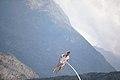 Chloé Moglia - suspension 15.jpg