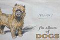 Cigarette Card AlbumCover Of Dogs 1937.jpg