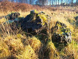 Cinderford Ironworks - A large amount of clinker still exists at the site, but no other surface remains are visible.
