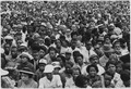 Civil Rights March on Washington, D.C. (Close-up view of a crowd at the march.) - NARA - 542062.tif