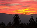 Clearwater National Forest - Social 3.jpg