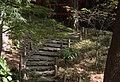 Climbing towards Tsutenkyo bridge (2096483945).jpg