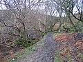 Clwydian Way-Taith Clwyd - geograph.org.uk - 310145.jpg