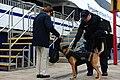 Coast Guard increases port security following Boston Marathon explosions (Image 1 of 3) (8658213944).jpg