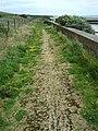 Coastal Path along the Groynes, Leys Beach - geograph.org.uk - 1366894.jpg