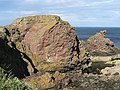 Coastal rocks - geograph.org.uk - 1379699.jpg