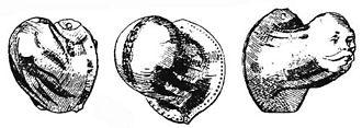 Codpiece - Metal codpieces, 16th century