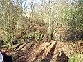 Colgate, UK - panoramio.jpg