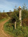 Column, Cann Wood - geograph.org.uk - 1534219.jpg