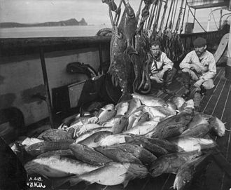 District of Alaska - Alaskan fishing boat with a catch of cod and halibut, c. 1900.