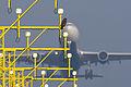 Common buzzard & Delta A330 (6350707297).jpg