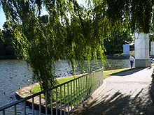 An inlet of the lake, landscaped with concrete footpaths, safety rails and shady trees. Many ducks are swimming next to shore.