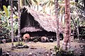 Community house of Yorlap (Yap Islands) with stone money made in Palau NOAA.jpg