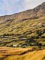 Connemara - panoramio (2).jpg