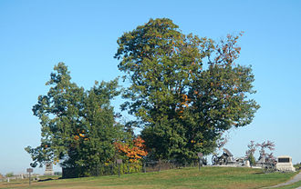 "Pickett's Charge - Copse of trees and ""high-water mark of the Confederacy"" on the Gettysburg Battlefield; looking north."