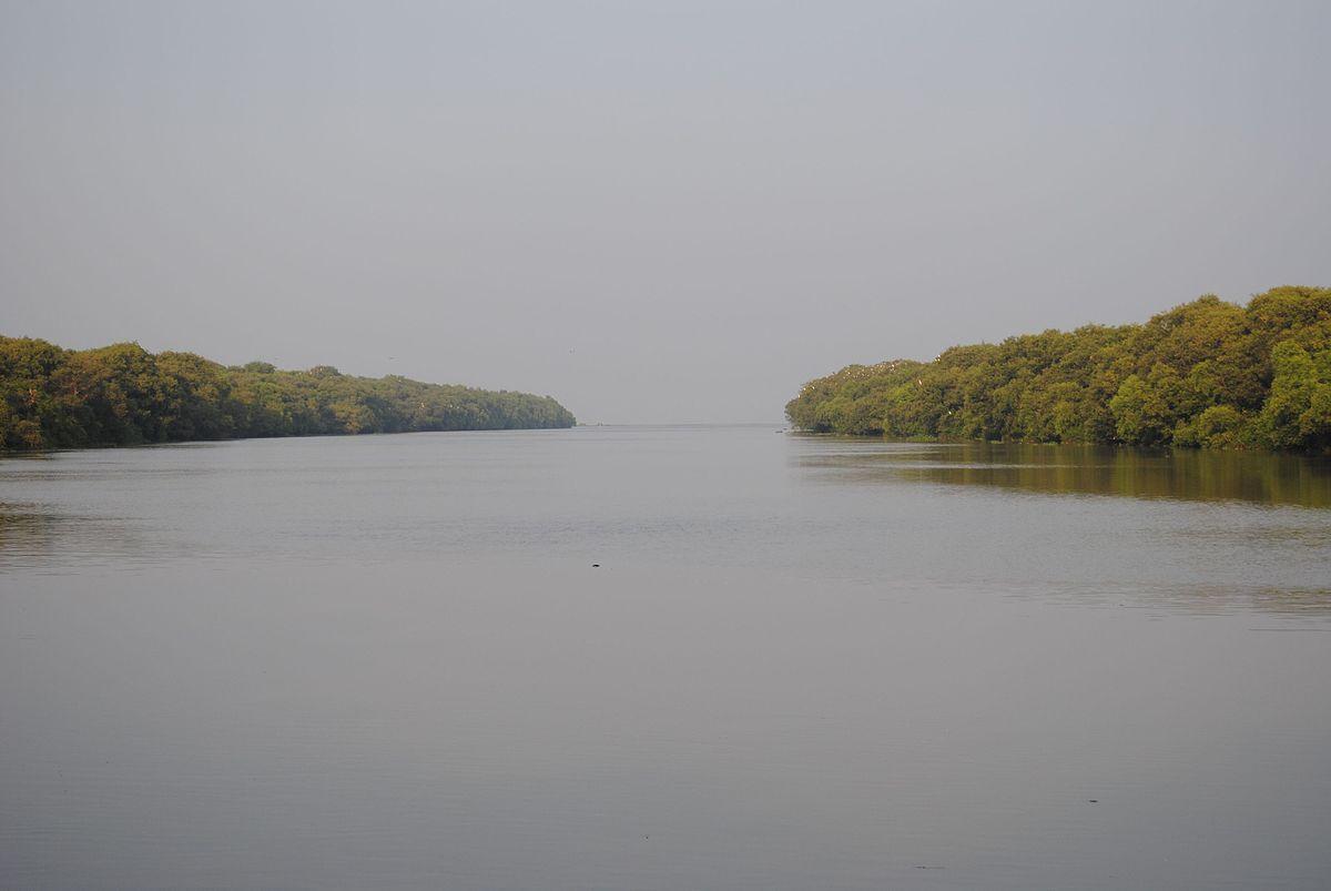 Wildlife Sanctuary Long Island