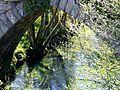 Cotobade-Ponte Borela2 (8663998021).jpg