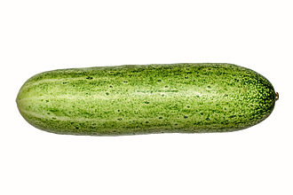 Cucumber - Photograph of a single cucumber fruit