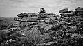 Dartmoor - Combestone Tor (6238303753).jpg