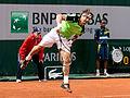 David Ferrer - Roland Garros 2013 - 009.jpg