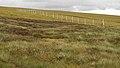 Deer Fence (An Sgòr Dubh) on Mar Lodge Estate (29JUL17) (20).jpg