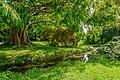 Doblhoffpark 9411.jpg