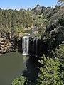 Dorrigo IMG 5128 - panoramio.jpg