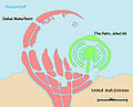 Dubaiwaterfront en.jpg