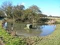 Duck Pond, Bentley - geograph.org.uk - 1733520.jpg