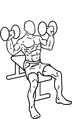 Dumbbell-shoulder-press-2.png