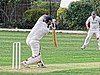 Dunmow CC v Brockley CC at Great Dunmow, Essex, England 32.jpg