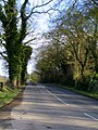 Dunover Road North - geograph.org.uk - 703043.jpg