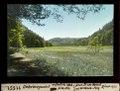 ETH-BIB-Unterbergental, aufwärts oberhalb Ecke 560-Dia 247-11551.tif