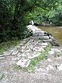 Eastern end of the Tarr Steps - geograph.org.uk - 926282.jpg