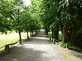 Edsbergs slott parken 2014b.jpg