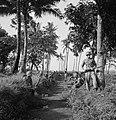 Een sectie militairen tijdens een rustpauze. Een korporaal geeft rugdekking, Bestanddeelnr 15851.jpg