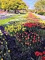 Egarpark Zentrales Blumenbeet 2.jpg