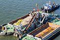 Eimerkettenbagger Aalscholver mit Schlepper Rupertus vor Deutzer Werft-4068.jpg